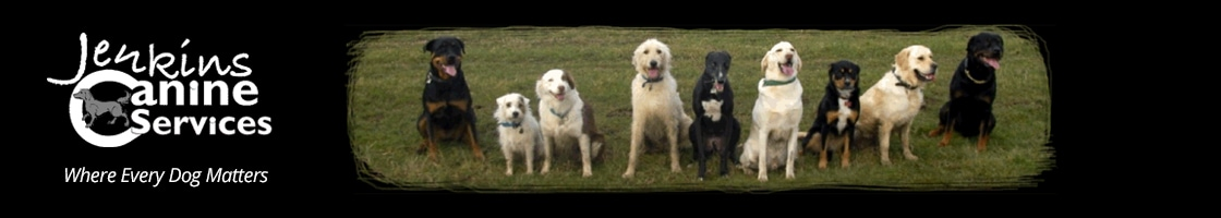 dog training kent